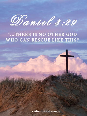 Daniel 3:29 '…There is no other god who can rescue like this!'